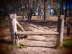 Barriers Ain't Barriers (Rantz) Tags: australia australiancapitalterritory canberra dikaiosyne myoz rantz oconnor au cables cablelicious cableicious