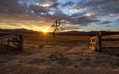 Hidden Valley (Eric Zumstein) Tags: hiddenvalley canon sunset sunburst landscape feild fence tree aoi elitegalleryaoi bestcapturesaoi