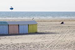 IMG_0481 (Azezjne (Az photos)) Tags: canon 75300 50 stm 600d berck sur mer bercksurmer cote côte dopale bromance plage sable bokeh zoom coucher soleil sunset beach sand eclipse dune mouette animaux animalière flou 75 300