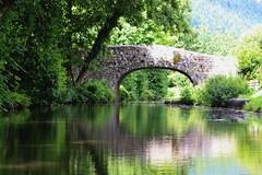 Llanover (Dickie-Dai-Do) Tags: canal llanellen bridge84 mbc tycochbridge green