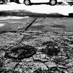 Une vision animale... (woltarise) Tags: montréal rosemont sol béton rue vision animale détails streetwise