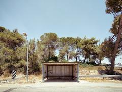 Hot Place to Wait (Ralph Graef) Tags: israel bus waiting summer heat travel tree symmetry lamp lantern desolation drab