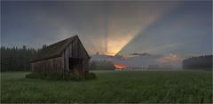 Morgenstund (Robbi Metz) Tags: deutschland germany bayern bavaria augsburgwestlichewälder reischenau häder landschaft landscape sonnenaufgang sunrise scheune barn colors canoneos