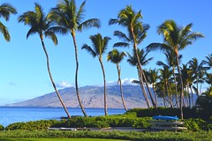 Andaz Maui at Wailea Resort (brp1113) Tags: resort wailea landscape mountain horizon tropical scenic andazmaui andaz palmtrees shoreline shore coast coastline pacific ocean maui
