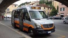 3033 (Lu_Pi) Tags: amt genova autobus bus minibus mercedes mercedesbenz sprinter tomassinistyle amtgenovalinea273