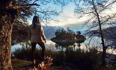 LA ISLA SOLITARIA (Juan Montiel) Tags: travel turismo patagonia water agua isla island viajes argentina arboles bosque forest