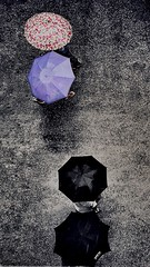 A Tale of a rainy day! (CuriousClickZ) Tags: exploring flickr cityscapes storytelling people picture beautiful photography snapseed iphone7plus experimenting topview colours umbrellas rain rainyday road