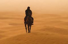 Jinet del desert dins la tormenta de sorra_ Túnez, 0200 (2835) (Francesc/Francisco) Tags: jinet desert sorra arena desierto túnez caballo caball tormentadesorra tormentadearena tuníssia inexplore explore