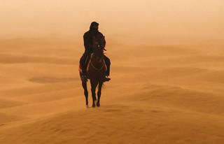 Jinet del desert dins la tormenta de sorra_ Túnez, 0200 (2835)