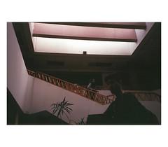 (Paulina ML) Tags: film analog 35mm pentax nikon photography 135mm
