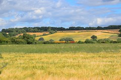 Passing by fields of ripening Barley, Colas 37175 propels a Network Rail Test Train from Derby RTC to Peterborough, with a DBSO leading, at Ketton. 14 07 2017 (pnb511) Tags: train diesel loco locomotive colas networkrail class37 barley fields farmland sunshine summer