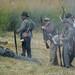 2017 Civil War Camp and Battle Reenactment