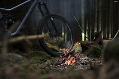 20170716_RT (robtrnka) Tags: fire trail bike break rb praxisworks forest easy robtrnka robtrnkaphoto shootsimple 50mm simple noseq