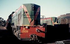 1870 A1509 XA1406 Narrogin 17 April 1981 (RailWA) Tags: railwa philmelling westrail a1509 xa1406 narrogin