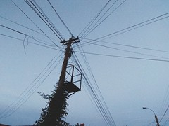 The direction of the cables... (vasy.official) Tags: cable cables column sunset night gras plant light