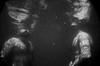 Sunken colossus (riccardo.fissore) Tags: man naked colossus giants sunken sink water underwater underwaterphotography bw blackandwhite men body caustics light lake river fiume lago acqua sottacqua shadow dark deep nudo uomo maschio