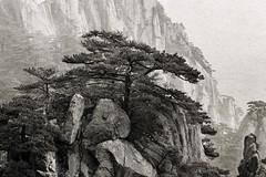 Pines and rocks (tmeallen) Tags: huangshannationalpark huangshanpines pinushwangshanensis granite rocks cliffs mists antiquericepaper blackandwhite anhuiprovince china unescoworldheritage landscape chinesedrawing