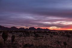 Kata Tujata Sunrise Uluru-11
