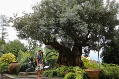 2017 SPM1756 Sam Duarte at Jardim Tropical Monte Palace (Monte Palace Tropical Garden) in Madeira, Portugal (teckman) Tags: 2017 botanicalgardens funchal jardimtropicalmontepalace madeira portugal samuelduarte pt