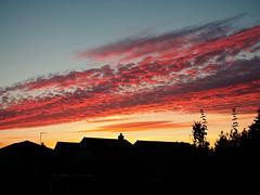 P1022048 (DG - Images) Tags: sunset redsky nighttime sky cloud serene serenity beauty pocketworld iglandscape dreamspots visualheaven landscapephoto landscapelover natgeoadventure earthexperience mthrworld majesticearth nakedplanet theglobewanderer roamtheplanet fantasticearth awesomeearthpix earthfocus colorsofday visualambassadors naturewizards igcountryside ourplanetdaily earthofficial natgeo nationalgeographic