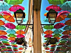 Reflexos 45 (2) (#moliço) Tags: ribbet cores multicolor guardasois umberellas águeda portugal turismo festa colorido aveiro saariysqualitypictures