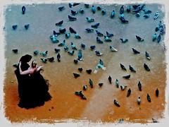 FXPhotoStudioExportedImage (closier.christophe) Tags: paris mariage pigeons création christopheclosier