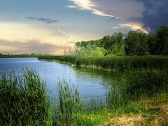 Dakota wetlands 6 (mrbillt6) Tags: northdakota landscape rural prairie wetlands pond waters grass trees nature scenic outdoors country countryside