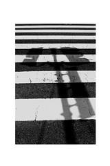 IMG_2377 (narmi786) Tags: photographer photography tumblr aesthetics school year11 year 11 park flowers light painting nature journey poetry artist art aesthetic double exposure dslr amateur noir black white blanc blanche blancetnoir blackandwhite london sepia south bank londrés striped stripes road crossing noiretblanc japan tokyo beijing rue bike vélo