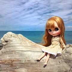 My lovely Misha love to travel with me. (PrincessSheshez) Tags: mishatebyalublu takarablythe doll blythedoll blythe