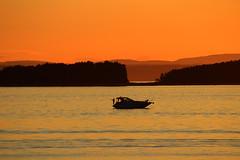 Summer night fishing