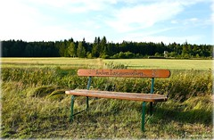 enjoy...... (mayflower31) Tags: natur bank sommer wiese bench