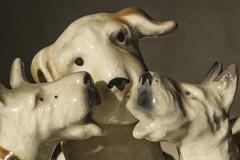 Dogs (Mario Donati) Tags: three macromondays nikon d3100 sigma70300mm