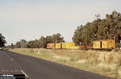 A1502 near Boyanup 16 December 1981  J254 Joe Moir (RailWA) Tags: railwa philmelling joemoir westrail a1502 near boyanup 16 december 1981 j254 joe moir