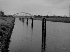 2017 Elbe (jeho75) Tags: deutschlandgermany zenza bronica etr zenzanon mc schwarz weis black white mittelformat medium format analog analoge elbe river flus brücke bridge magdeburg