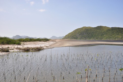 parc national sam roi yot - thailande 71