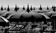 DSC_9144_3726 . Il tremolar della marina. (angelo appoloni) Tags: ombrelloni spiaggia sedie sdraio riverberi di luce sul mare beach umbrellas sun loungers river lights sea