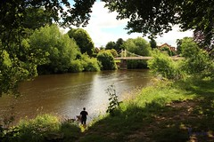 Gone Fishin' (innpictime ζ♠♠ρﭐḉ†ﭐᶬ₹ Ȝ͏۞°ʖ) Tags: green river riverside bridge trees verdant hereford footbridge fishing wye bishopsmeadow riverwye 520516412713528 angler gonefishin riverbank angling brownwater wading shade downbytheriverside