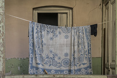 Delft blue (Giara,) Tags: georgia tbilisi laundry sheet blue