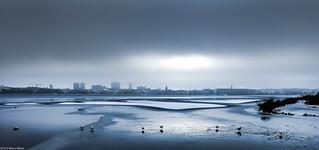 Winter-Skyline Hamburg (in explore)