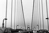 *** (Misha Sokolnikov) Tags: sanfrancisco ca california sf goldengate goldengatebridge bridge fog lines geometry leica leicamonochrom leicamm aposummicron apo 50mm blackandwhite noiretblanc blancoynegro monochrome