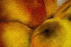A Little Part of Art (Piagor) Tags: lienzo pintura cuadro macro macrofotografia olympusem5markii olympus30mmf35macro macromondays texture
