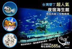 台灣墾丁【超人氣】夜宿海生館 - 魚我共眠 x 生態教育 - 來一場美麗的海洋夢,每位港幣$565起 (Asia Travel Care) Tags: 夜宿海生館 台灣墾丁 sleepover kenting aquarium