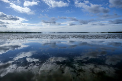 2 skies (Wouter de Bruijn) Tags: fujifilm xt1 fujinonxf14mmf28r sky clouds water reflection reflections nature outdoor veersemeer vrouwenpolder walcheren zeeland nederland netherlands holland dutch