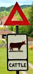 28189 (benbobjr) Tags: somerset england uk unitedkingdom gb greatbritain britain british english wells vicarsclose street road lane terrace torhilllane alley alleyway sign signs farm farmer track trackway path pathway footpath bridle way publicfootpath
