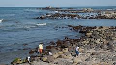 picking up seashells (kasa51) Tags: beach coast sea ocean shore pickingup seashells seaglass people choshi chiba japan