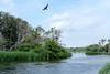 20170711_160709-X-T2-6082.jpg (Erwin Schoonderwaldt) Tags: water castricum dunes colony netherlands cormorants landscape pwn