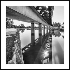 Colandose entre sombras. (jetepe72) Tags: puente reflejos madrid juan carlos i agua parque byn