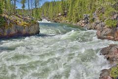White Water (Jim Johnston (OKC)) Tags: brinkofthefalls lowerfalls yellowstoneriver hike whitewater yellowstonepark canyonarea wyoming