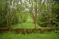 DSC_6142 (ErakkoPersoona) Tags: hylätty kasvihuone raunio kirkkonummi suomi finland ue urbanexploration urbanexploring exploring abandoned landscape
