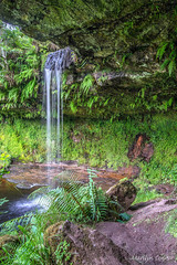 Glen Burn Falls (MC Snapper78) Tags: scotland nikond3300 glenburnfalls waterfall fairlie landscape marilynconnor kilbirnie ayrshire